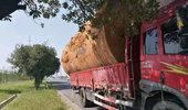 """""""老司机""""短驳货物运输技巧"""