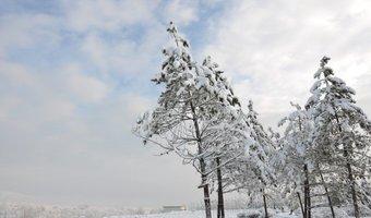 青海西宁下雪了,伙计们慢点开
