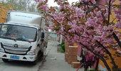 春暖花开日正是我的复工之日