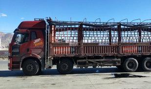 带你领略喜马拉雅下的川藏线卡车之家论坛